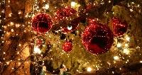 Eventi di Natale a Pescara Foto